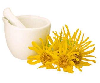 arnica contraindicaciones en homeopatía, cosmética y medicina