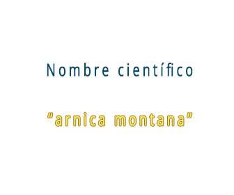 nombre cientifico del arnica